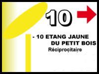 Etang jaune 1