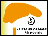 Etang orange