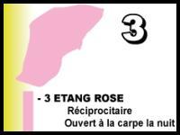 Etang rose 1